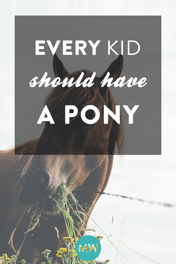 Every young child should care for and enjoy a horse